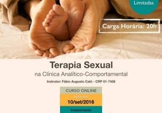 You are currently viewing Curso online de Terapia Sexual na Clínica Comportamental (divulgação de terceiros)