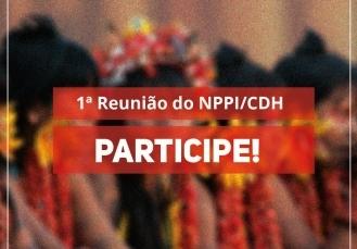 You are currently viewing NPPI promoverá reunião de trabalho em fevereiro